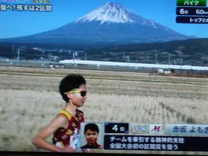 2P1030261.JPGのサムネイル画像